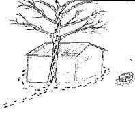 """Вы когда-нибудь проходили проективный тест  """"Дом-Дерево-Человек  """".  Это очень информативный и популярный рисуночный."""