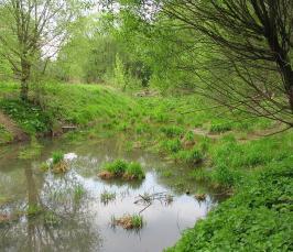 Сколько рек течет под москвой